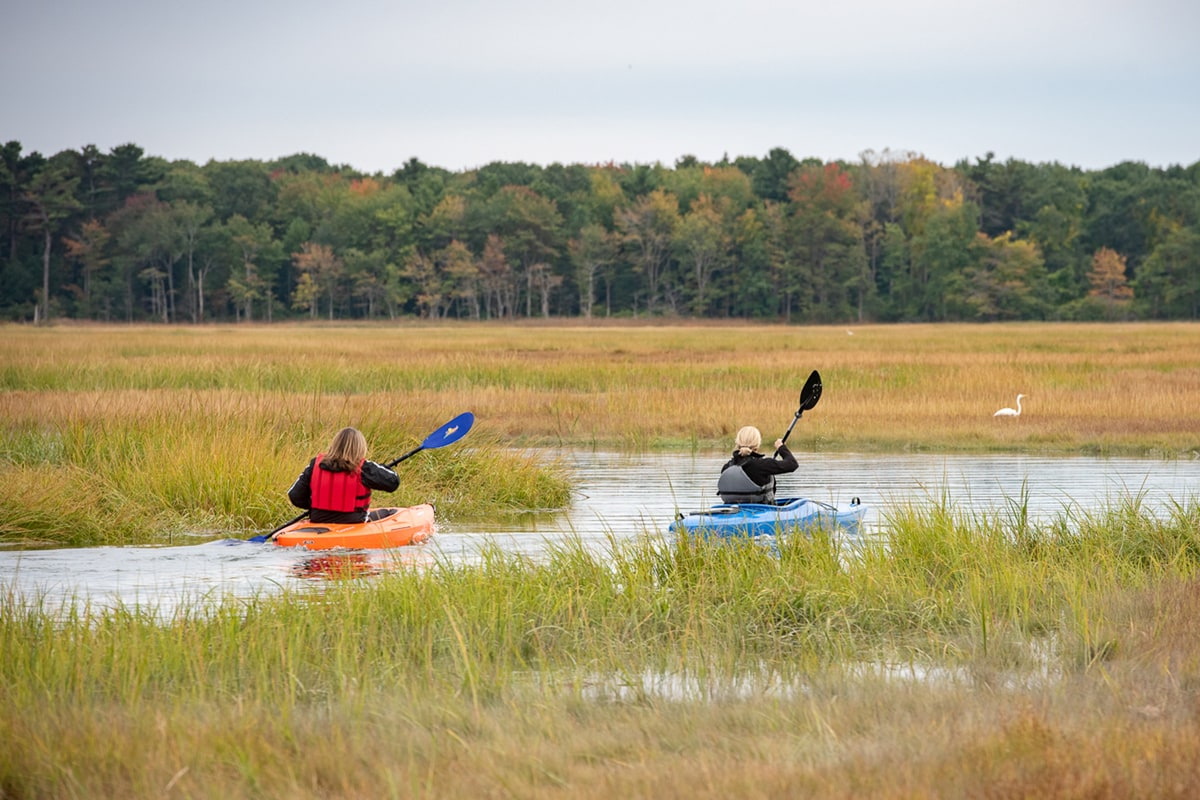 Kayak through the nearby salt marsh